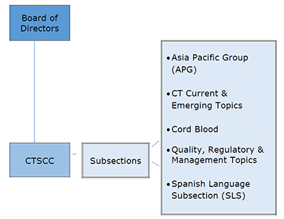 CT Section Flowchart